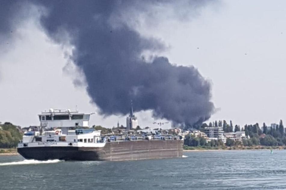 Große Rauchsäule über Köln: Feuerwehr hebt Warnung auf