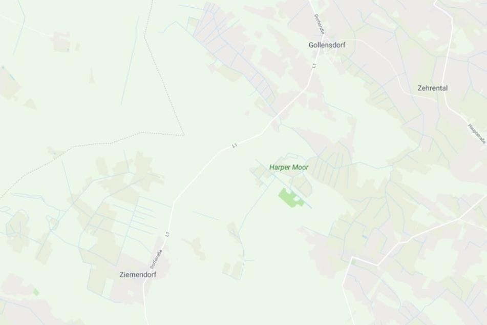 Der tragische Unfall ereignete sich auf der L1 zwischen Gollensdorf und Ziemendorf.