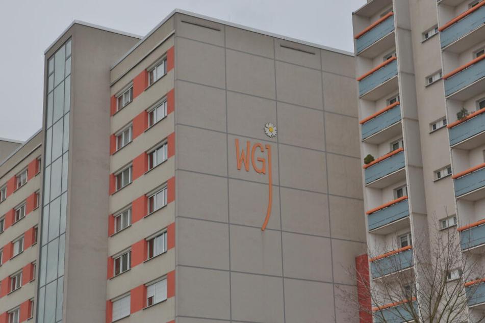 Häuser der Wohnungsgenossenschaft Johannstadt (WGJ) an der Elsasser Straße.