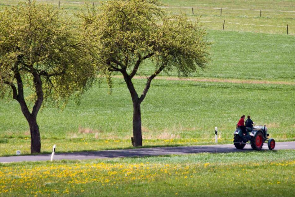 Mit der Sanierung von Landstraßen will die Regierung mehr Menschen in die ländlichen Gegenden locken. (Symbolbild)