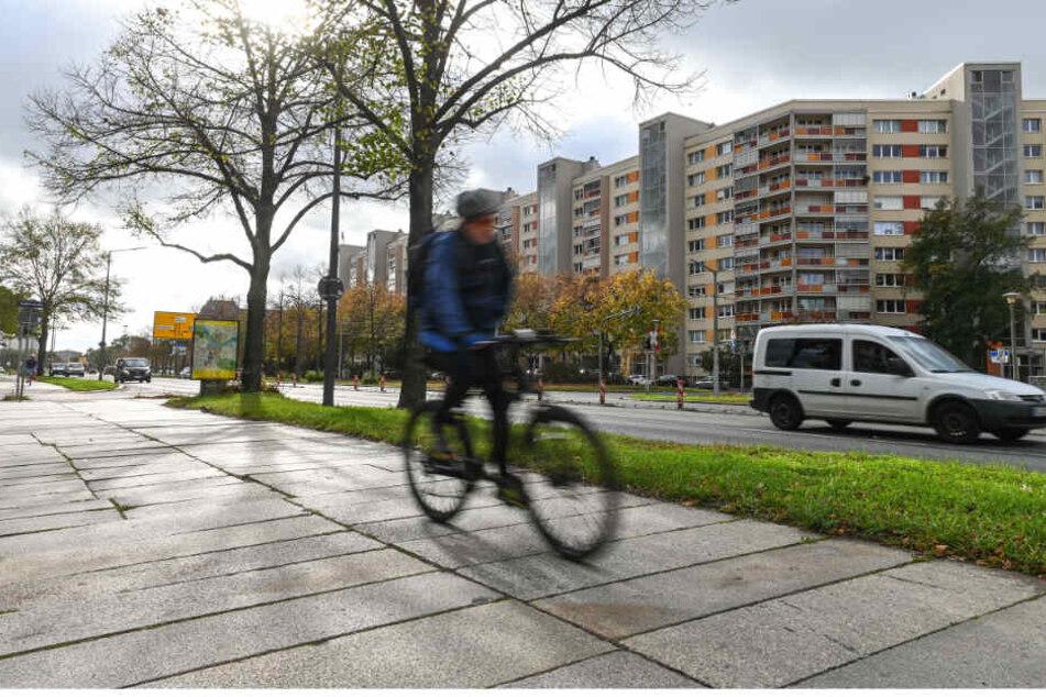 Die Albertstraße wird künftig deutlich fahrradfreundlicher. Noch teilen sich Radler dort einen holprigen Weg mit Fußgängern.