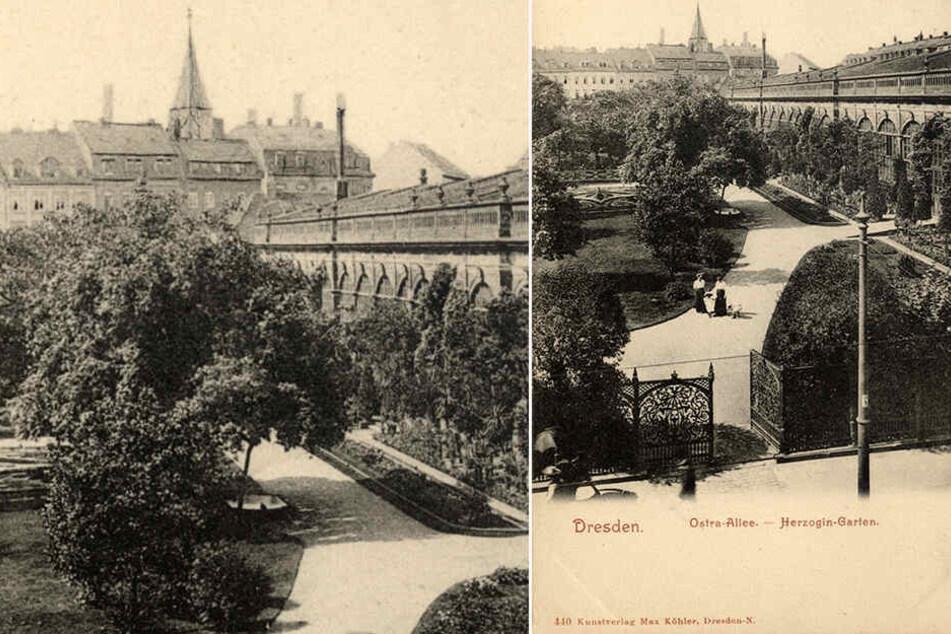 """Kunstvoller Zaun und Orangerie: So sah """"An der Herzogin Garten"""", wie die Anlage korrekt heißt, um 1910 aus. Der """"Garten"""" war seit 1535 im Besitz des Dresdner Hofes."""