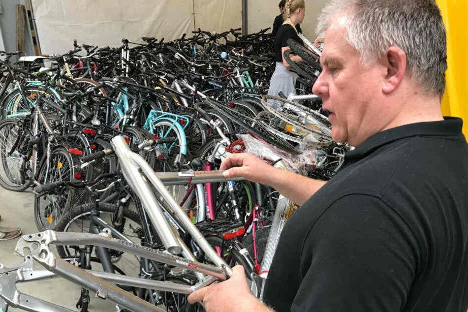Ermittler der EG Bike überprüfen die Rahmennummern der sichergestellten Fahrräder.