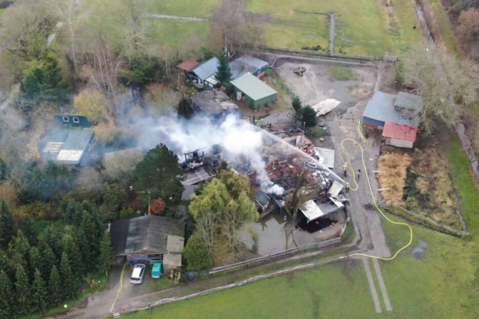 Brand im Pflegeheim: Feuerwehrleute finden weitere Leiche in der Ruine