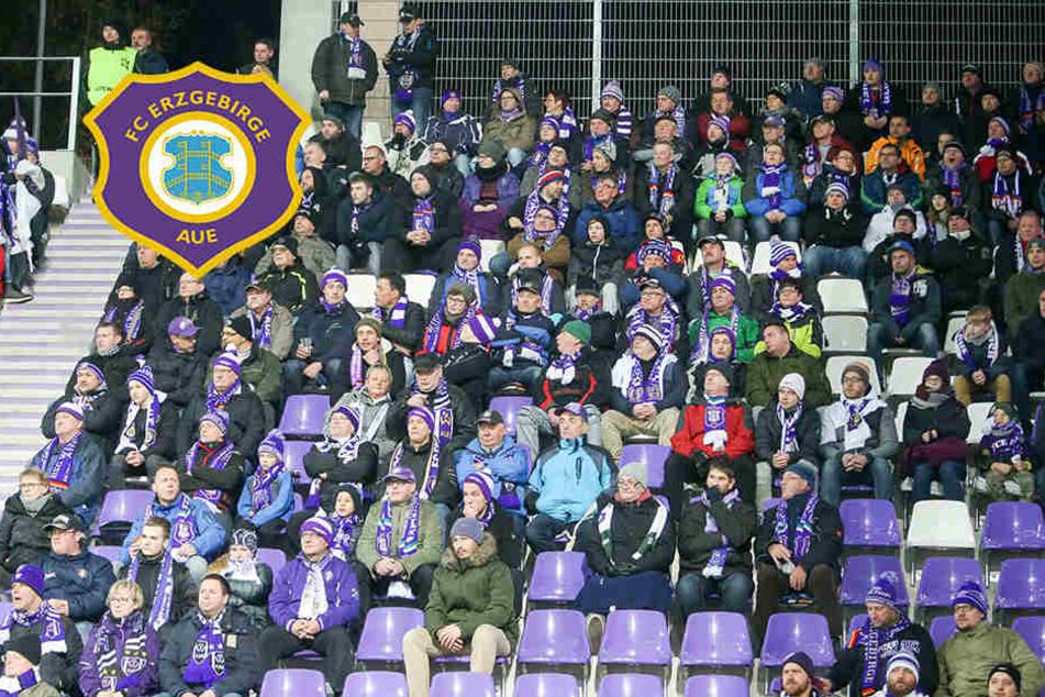 Leises Stadion: Darum schwiegen die Fans in Aue