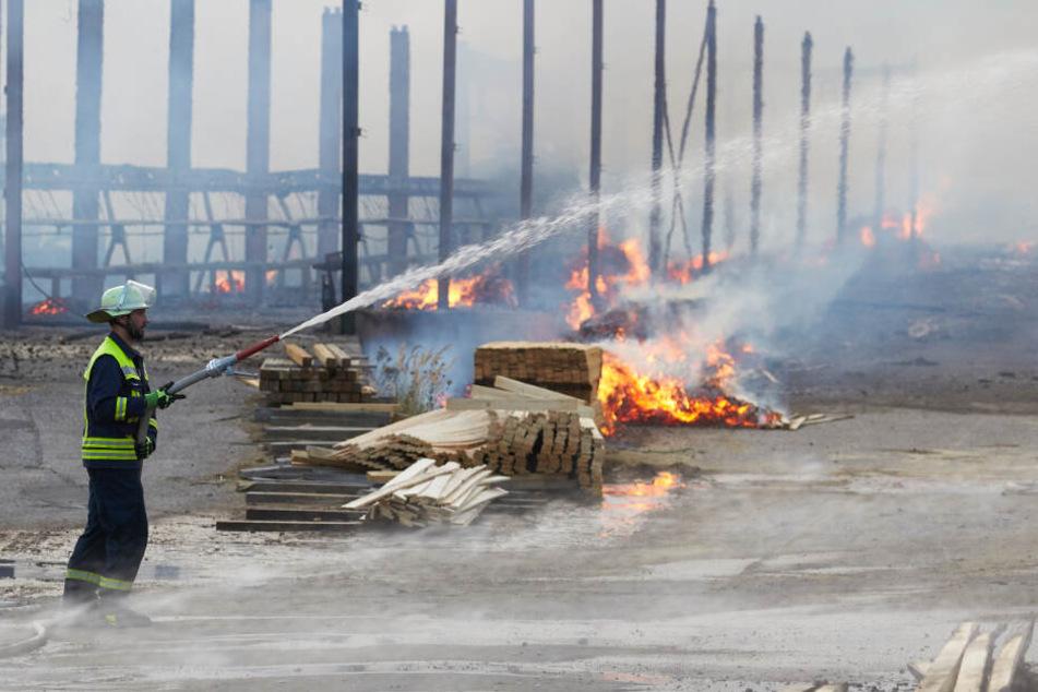 Das Feuer zerstörte die Lagerhallen komplett.