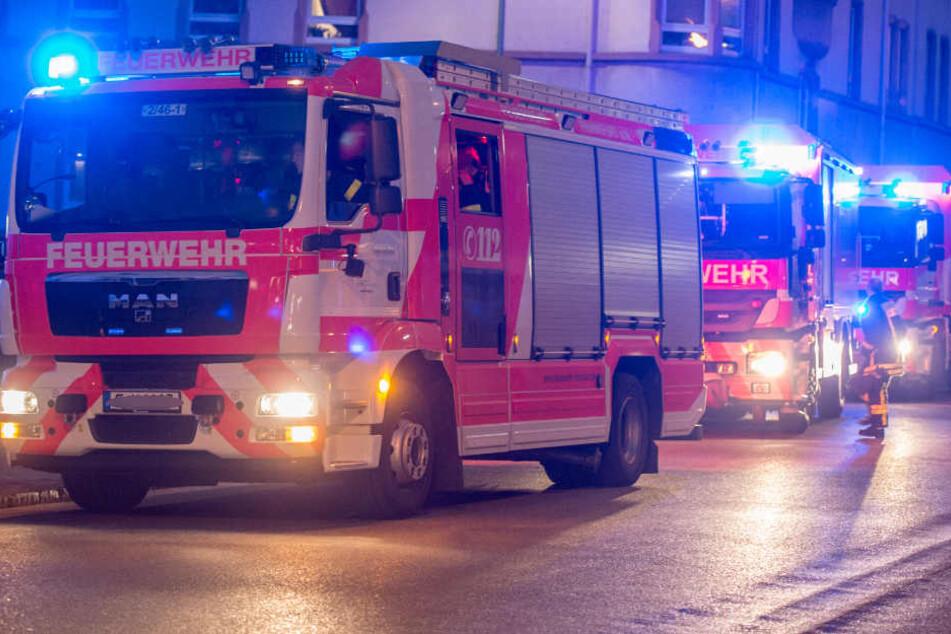 Kletterhalle in Frechen Chimpanzodrome brennt komplett ab - Mitarbeiter schockiert