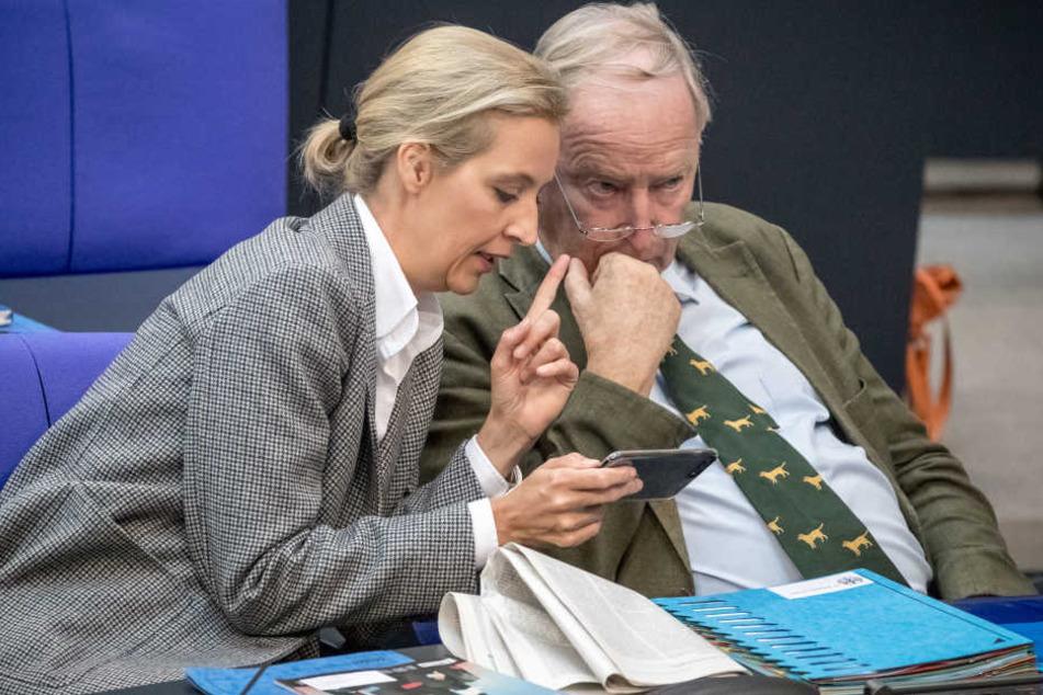 Alice Weidel (AfD) spricht während einer Bundestagssitzung mit ihrem Co-Fraktionsvorsitzenden Alexander Gauland.