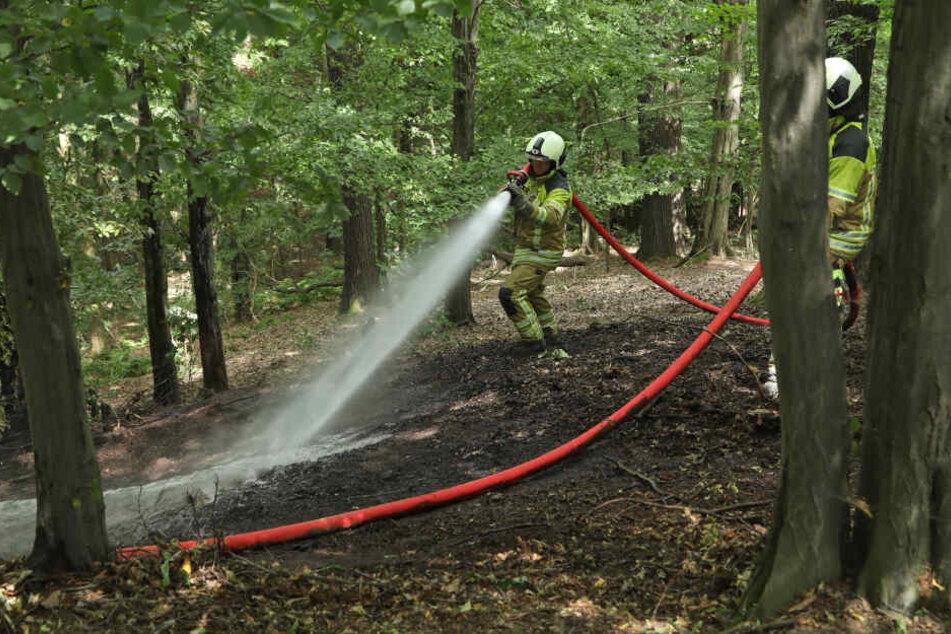 Die Feuerwehr im Einsatz. (Archivbild)