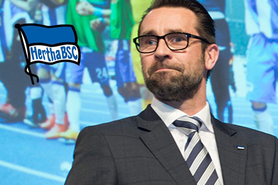 """Hertha BSC bemüht, """"ab 2025 im neuem Stadion zu spielen"""""""