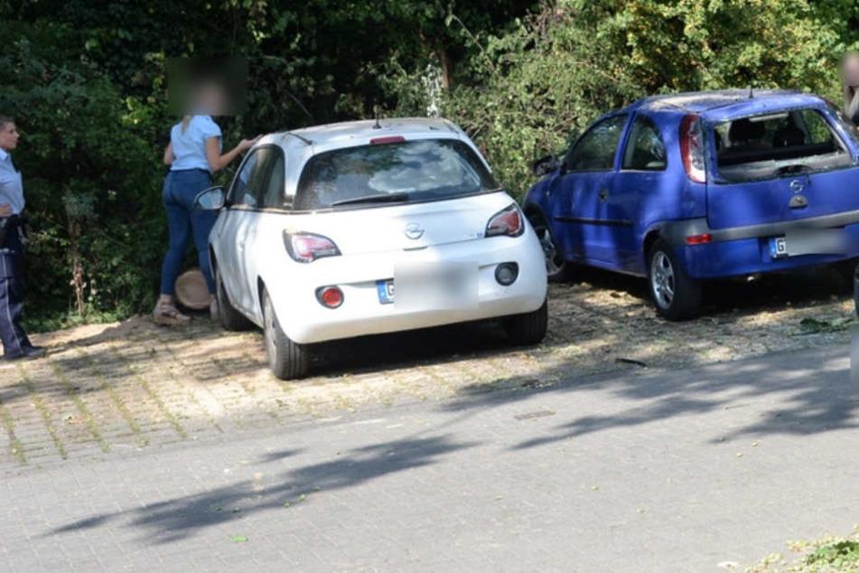 Vermutlich wegen Trockenheit: Ast kracht auf zwei Opel
