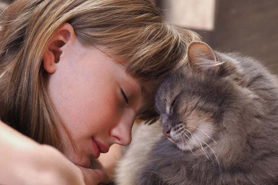 Solche süßen Schmuseszenen sind ein gutes Zeichen dafür, dass die Katze ihre Halterin liebt.