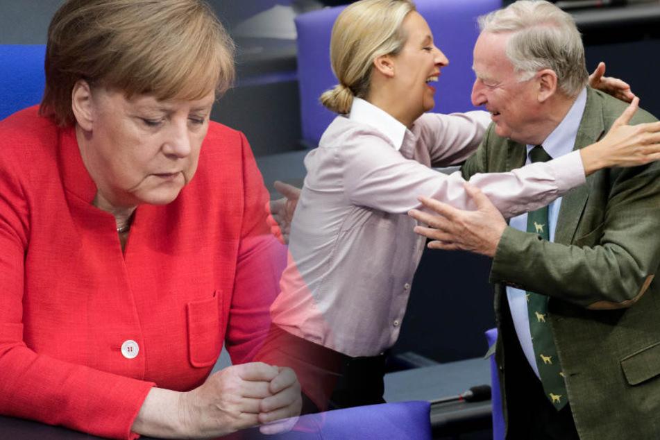 Angela Merkel (64) und die Union verlieren weiter in der Wählergunst. Alice Weidel (39) und Alexander Gauland (77) können sich freuen.