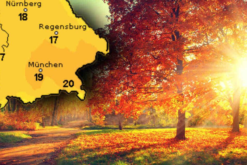 Am Dienstag gibt es nochmal einen richtigen goldenen Herbsttag. (Symbolbild)