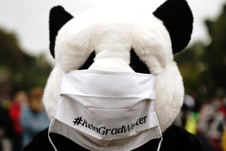 Als Panda verkleidet demonstriert ein Teilnehmer mit Fridays for Future Aktivisten im Rahmen eines internationalen Klimaprotesttages wieder für mehr Tempo im Kampf gegen die Klimakrise.