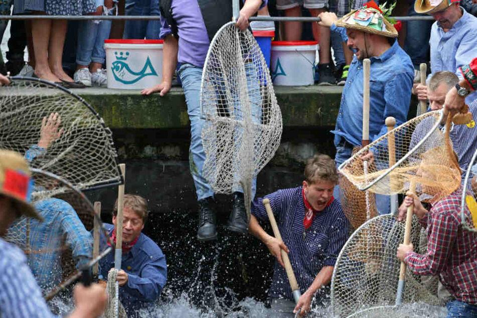 Letztes Jahr kamen rund 1200 Menschen zum Fischerstechen.