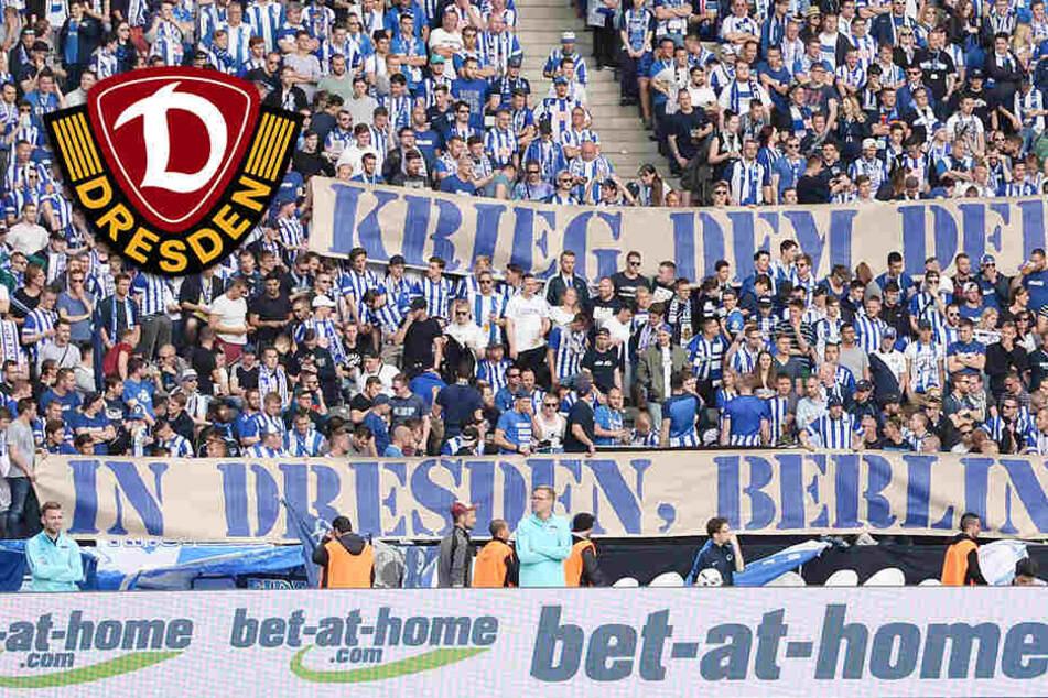 """""""Krieg dem DFB"""": Vereine solidarisieren sich mit Dynamo"""