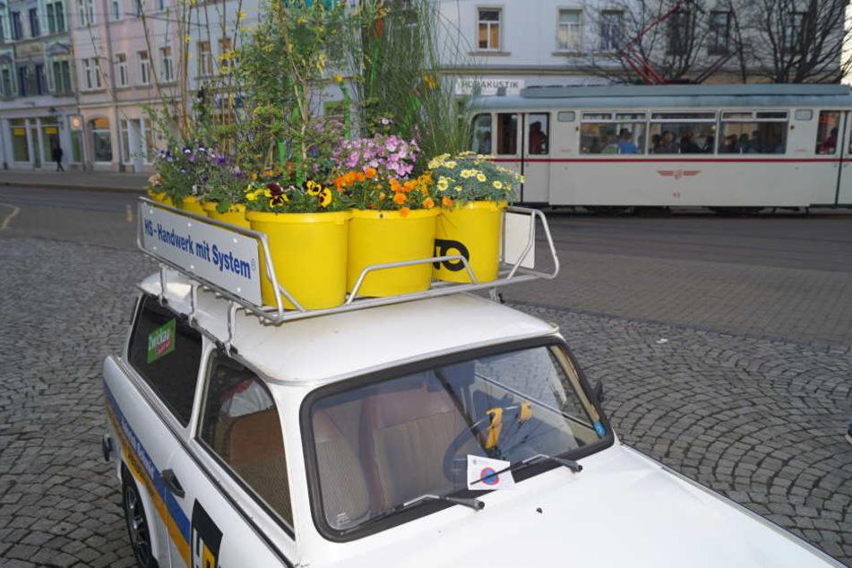 Ein mit Blumen dekorativ hübsch hergerichteter Trabant war von der Firma am Freitag auf dem Schumannplatz geparkt worden - und bekam einen Strafzettel.