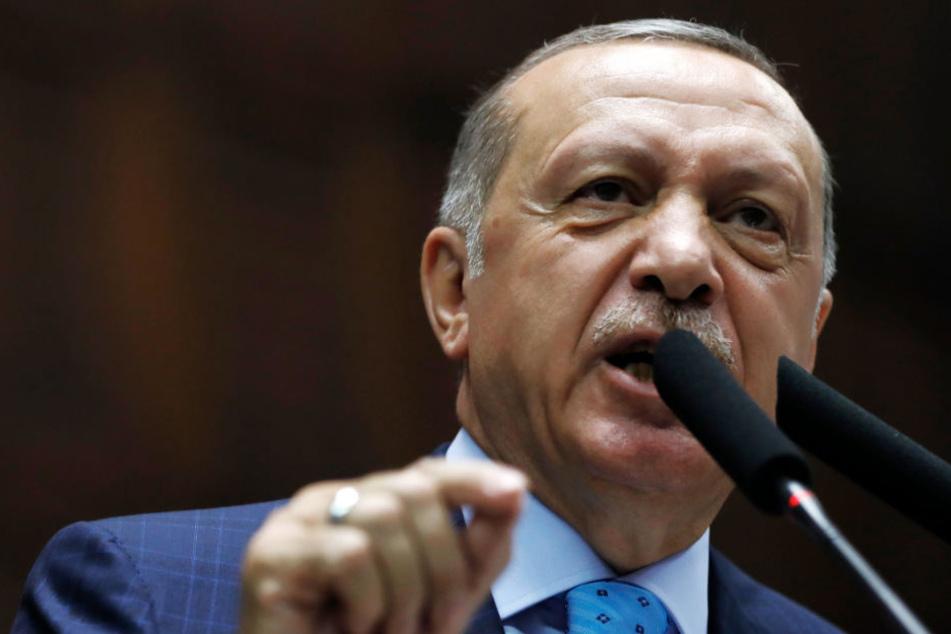 Erdogan lässt Mann vernehmen, weil er ihn im Netz beleidigt haben soll
