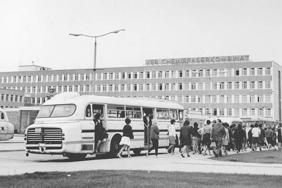 Schichtwechsel 1968 beim Chemiefaserkombinat in Wilhelm-Pieck-Stadt Guben. Die Belegschaft kam teils auch per Werksverkehr zum Kombinat. Die Idee lebt wieder auf.