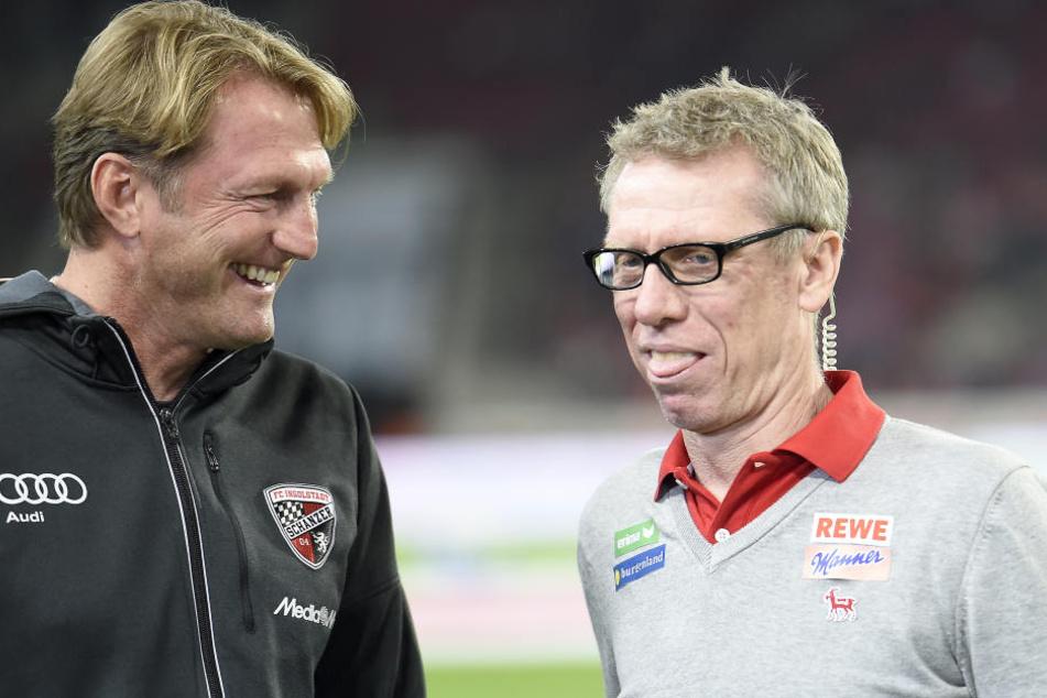 Ralph Hasenhüttl (l.) und Peter Stöger trafen sich vergangenen Saison schon. Da trainierte der RB-Coach noch Ingolstadt.