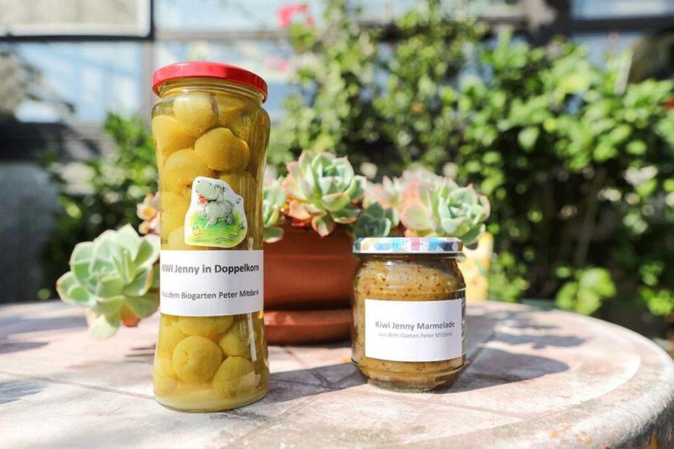 Peter Mitdank fiebert der Ernte entgegen. Dann werden die Kiwis wieder eingelegt oder zu Marmelade verkocht.