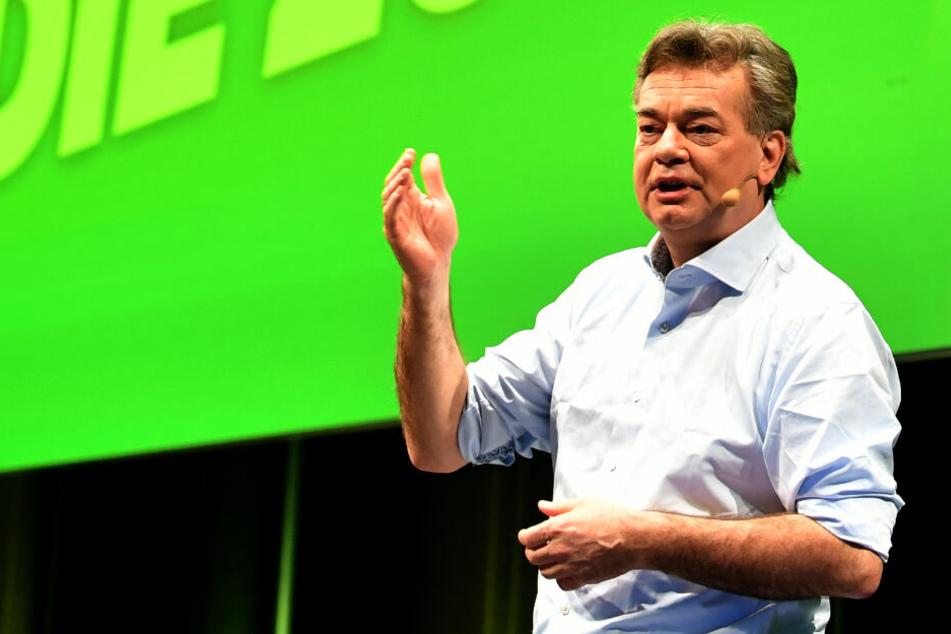 Grüne in Österreich stimmen für Koalition mit ÖVP