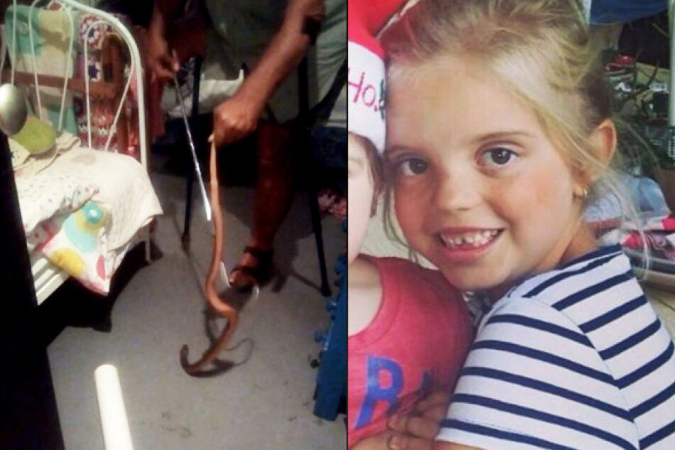 Die kleine Mikayla-Sue Grove (6) hat einen echten Alptraum durchlebt: Sie wurde im Schlaf von einer Kobra gebissen.