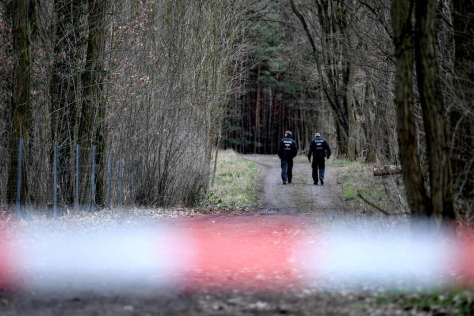 Polizisten gehen einen abgesperrten Waldweg in der Nähe des Fundortes der Leiche entlang. (Symbolbild)