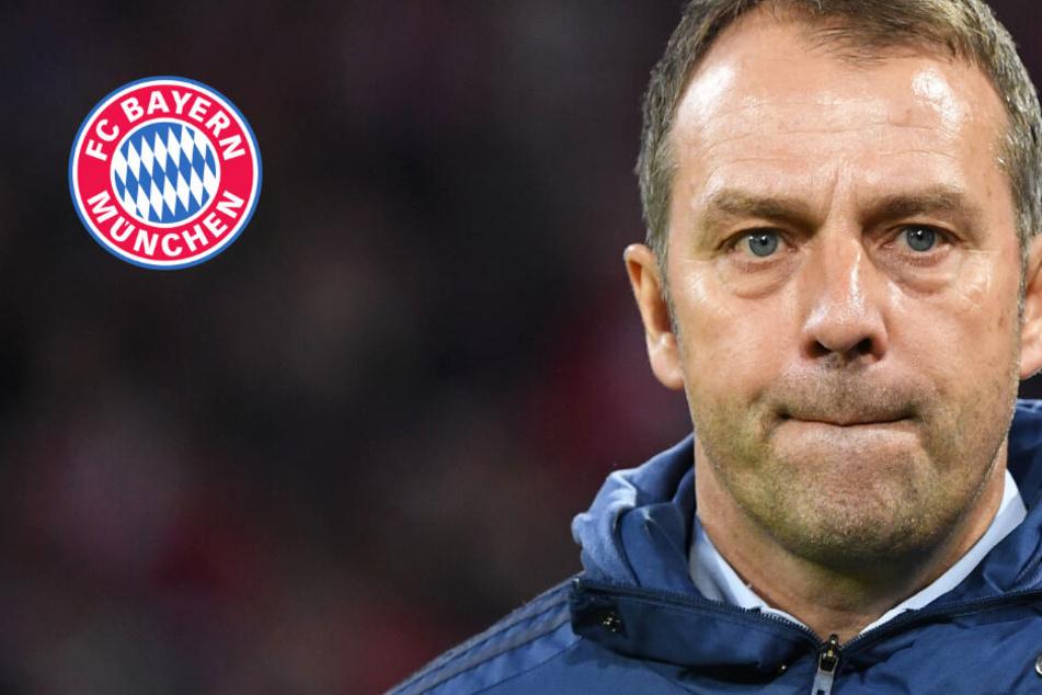 FC Bayern: SC Paderborn vor Augen, CL-Kracher gegen FC Chelsea im Hinterkopf