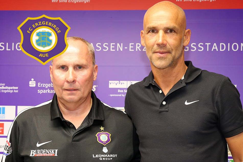 """Leonhardt findet nach """"zwei Tagen Wachkoma"""" neuen Aue-Trainer"""