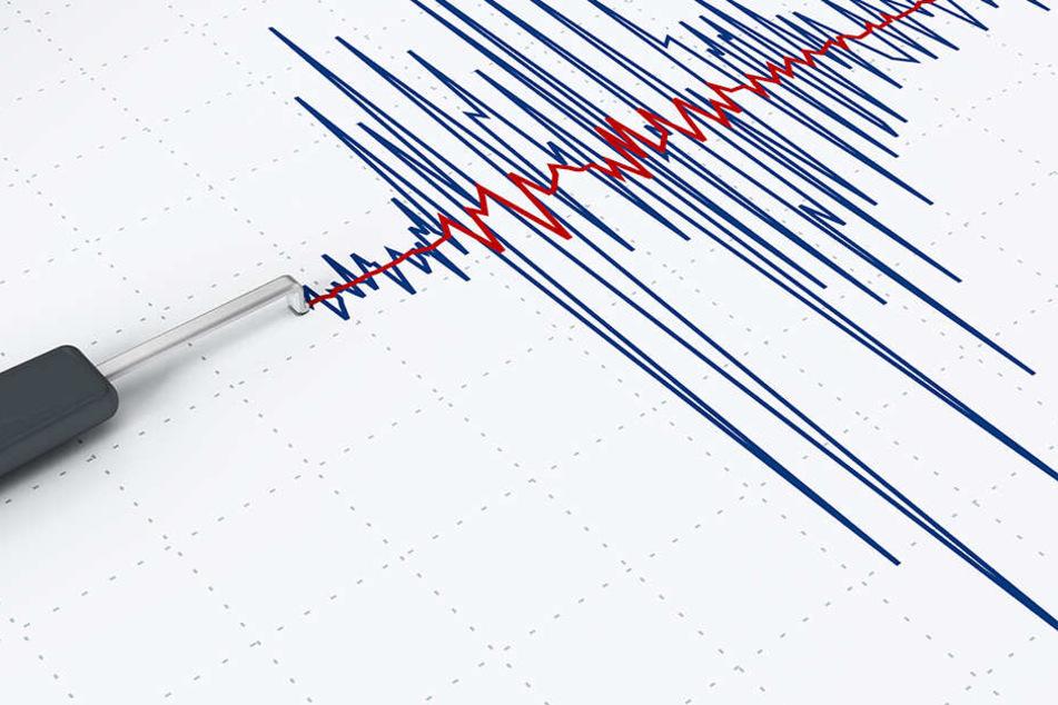 Wieder Erdbeben in Sachsen: Schwarmbeben erschüttert Vogtland