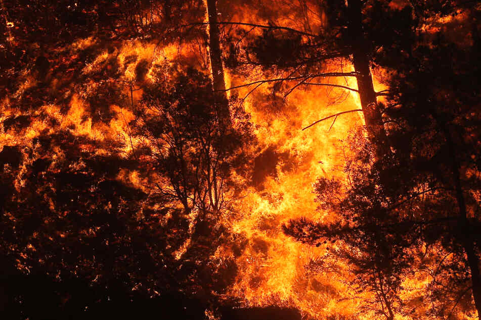 Flammen wüten in einem Waldgebiet nahe dem Dorf Akcayaka in der türkischen Provinz Mugla.