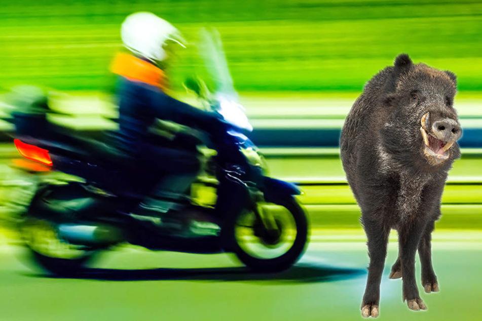 Der Rollerfahrer (58) erlag noch am Unfallort seinen schweren Verletzungen. (Symbolbild)