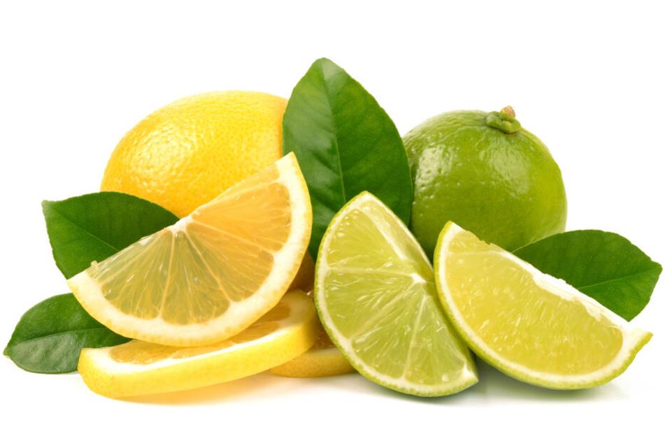 Zitronen und Limetten, Geschmacksträger einer völlig neuen Generation.