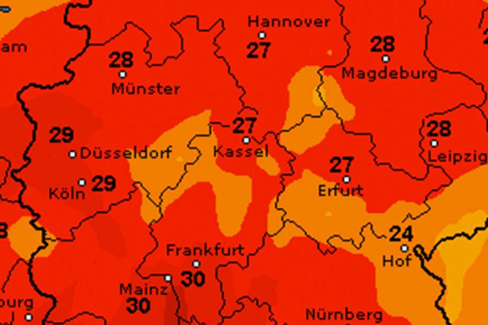 Endlich! Jetzt wird es nochmal richtig warm in OWL. Am Dienstag bis zu 27 Grad.