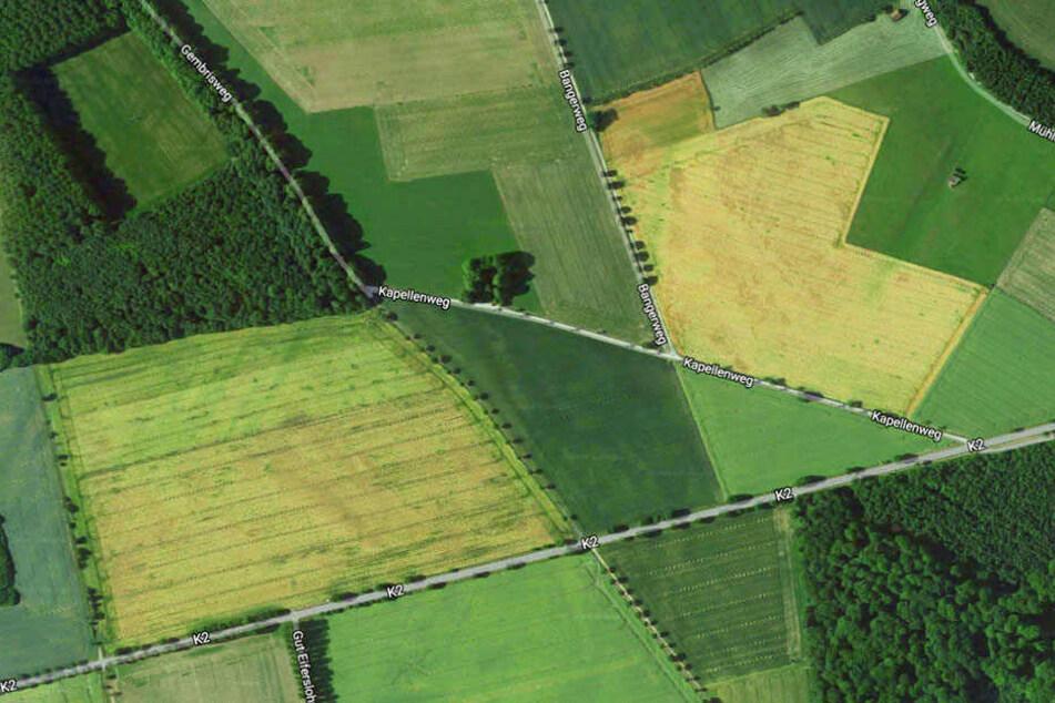 In diesem Bereich soll die Volkssternwarte entstehen.