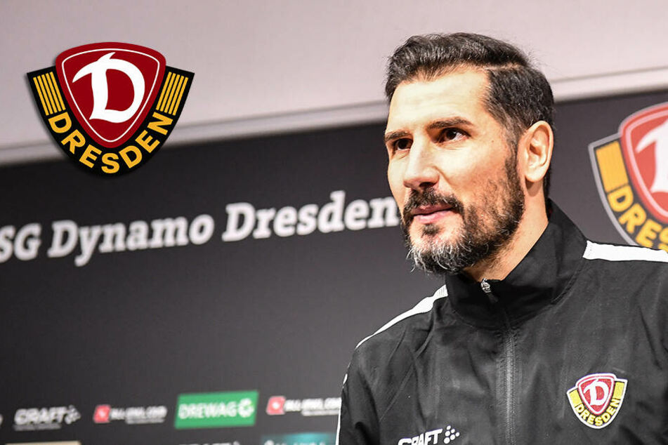 Dynamo Dresden: Cristian Fiel offiziell als Cheftrainer vorgestellt
