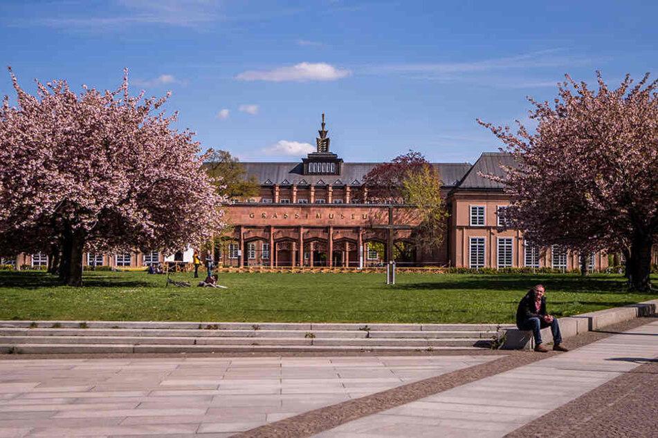 Das Grassi-Museum feiert am Sonntag sein zehnjähriges Bestehen seit der Wiedereröffnung.