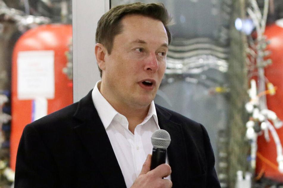 Elon Musk (48) spendete eine Million US-Dollar, was einer Million Bäumen entspricht.