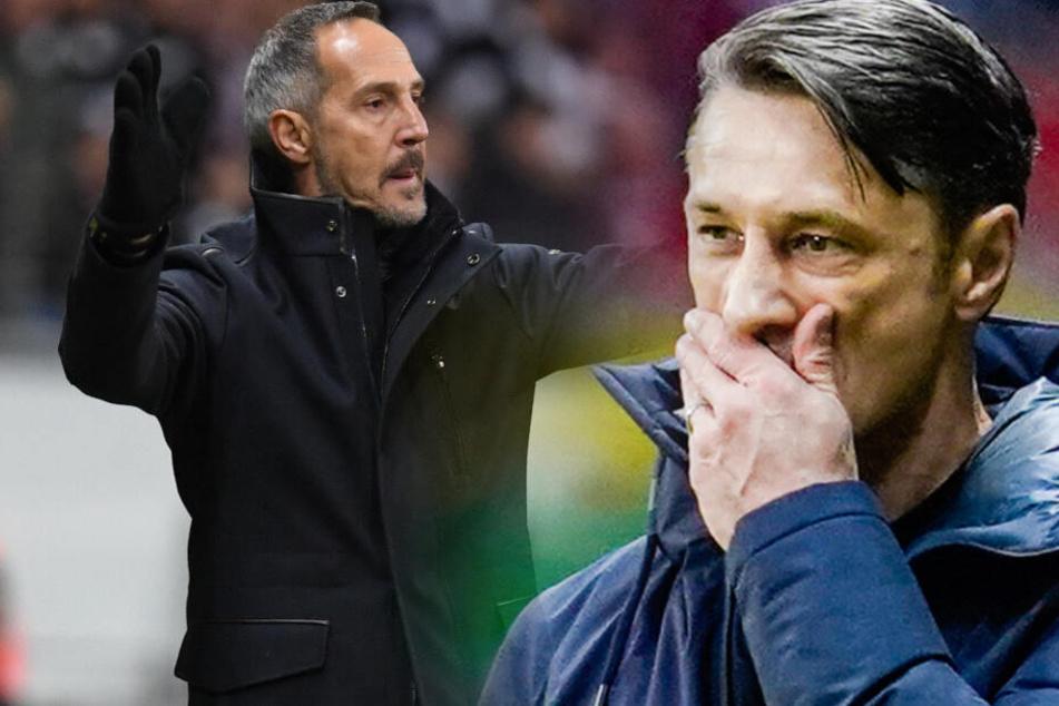 Hertha BSC soll neben Niko Kovac (r) auch an Eintracht Frankfurt-Trainer Adi Hütter (l) Interesse haben.
