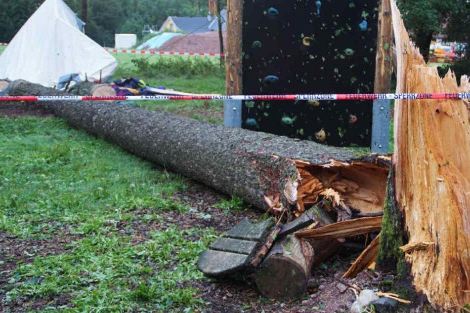 Baum stürzt auf Zeltlager und tötet Jugendlichen