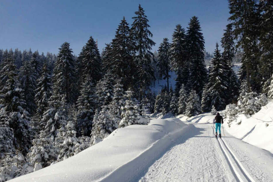 Eingeschneit in der Ski-Hütte: Zwölf Wintersportler wieder frei!
