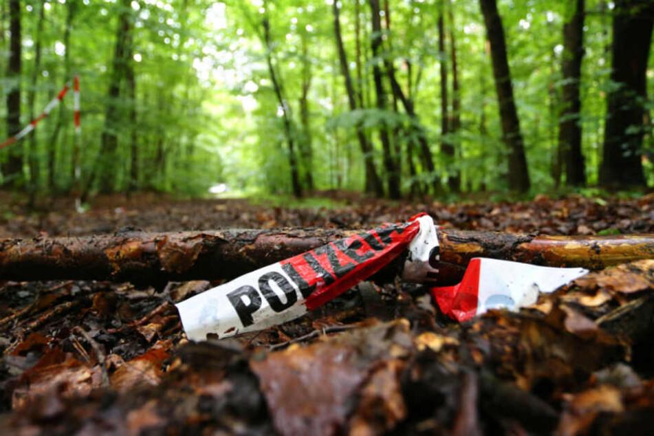 Unter Laub fand ein Spaziergänger eine Leiche in einem Wald in halle (Saale) (Symbolfoto).