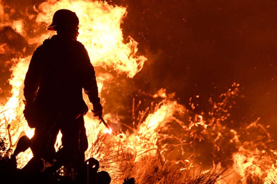 Mitten in einer brennenden Wiese entdeckte die Feuerwehr eine Leiche. (Symbolbild)