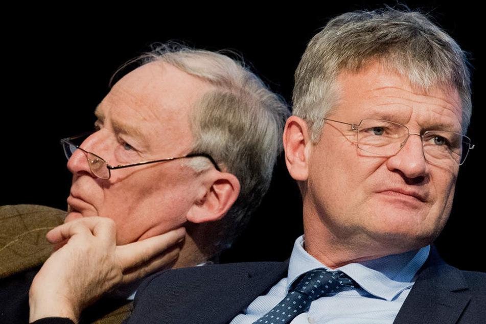 Alexander Gauland und Jörg Meuthen, die (neue) Doppelspitze der Alternative für Deutschland.