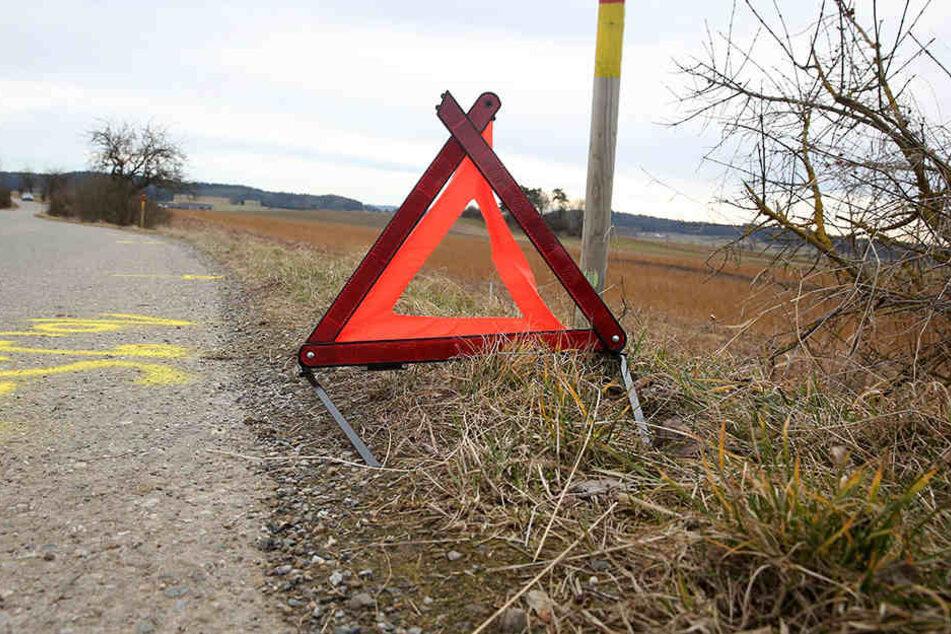 Die Frau krachte zuerst in eine Leitplanke, fuhr dann das Ortseingangsschild von Thallwitz um und landete anschließend auf einem Feld (Symbolbild).