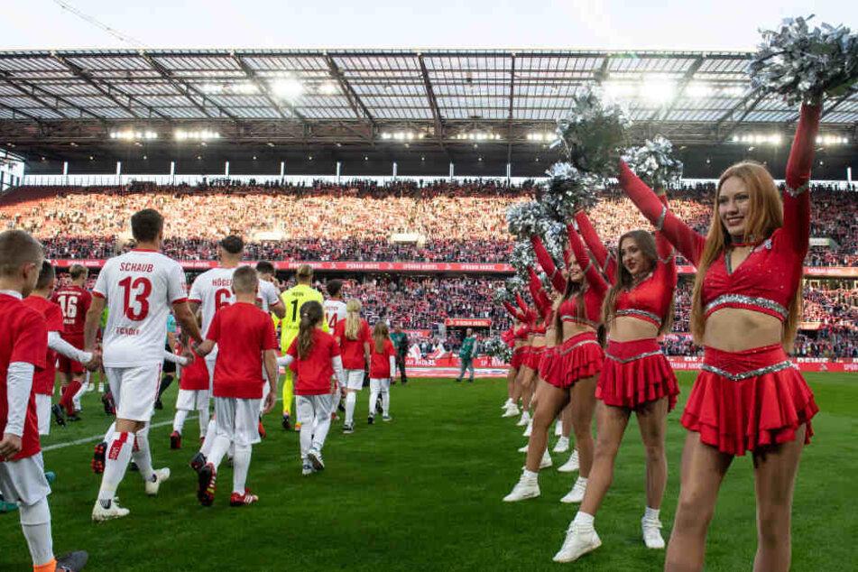 Die Cheerleader des 1. FC Köln sind immer ein echter Hingucker.