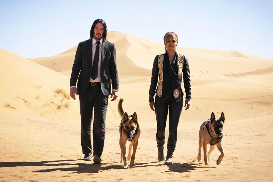 John Wick (l., Keanu Reeves) mit Sofia (Halle Berry) und ihren zwei Malinois-Schäferhunden in der Sahara-Wüste.