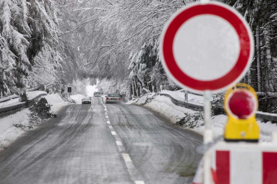 Trotz Sperrscheibe begeben sich viele Autofahrer in Gefahr und fahren durch Wälder, wie hier in Kretscham-Rothensehma.